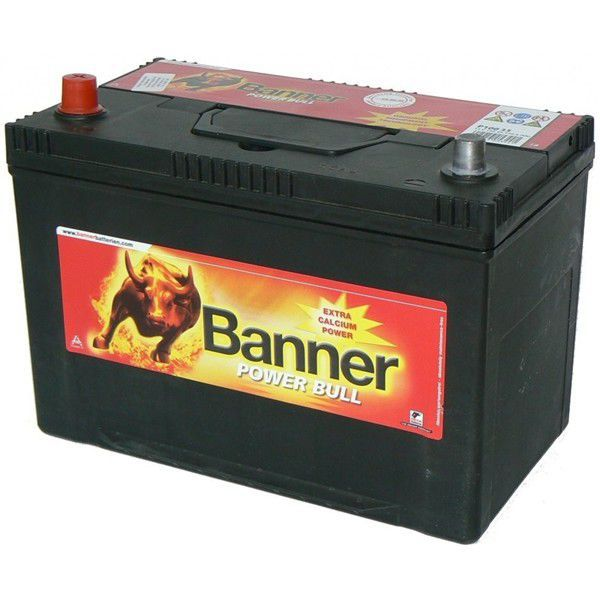BANNER P9505