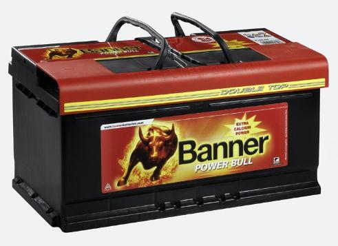 BANNER Power Bull P9533