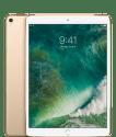 Apple iPad Pro 10,5'' Wi-Fi 64GB zlatý MQDX2FD/A