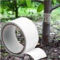 Biowin - lepiaca páska na škodcov