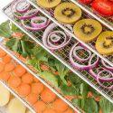 Klarstein Fruit Jerky Pro6