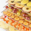 Klarstein Fruit Jerky 6+
