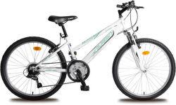 """OLPRAN Falcon Sus 24"""", Bicykel, biela-zelená"""