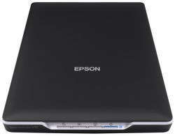 Epson Perfection V19