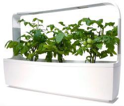Tregren T12 Kitchen Garden biely