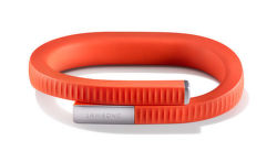 JAWBONE UP24 Large Persimmon