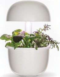 Plantui 3E Smart Garden biela + mix byliniek