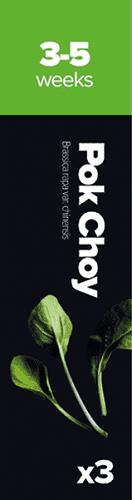 Pok Choy,3 kaps. Kaleráb kapusta čínska