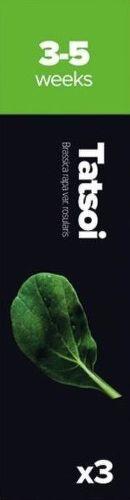 Plantui Tatsoi (kaleráb, kapusta)