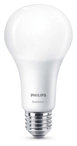 PHILIPS LIGHTING WW FR6, LED SSW 100W