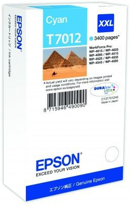EPSON EPCT70124010 CAYN cartridge