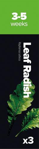 Leaf Radish 3 k Reďkev siata