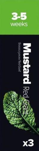Plantui Horčica čínska listová