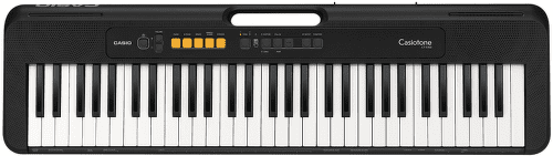 CASIO CT S100