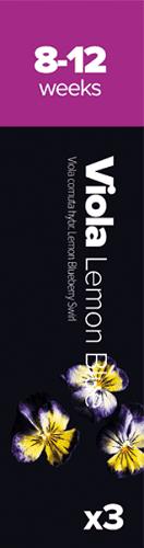 Viola Lem/BB, 3k Fialka roh. (sirôtka)Ž/M