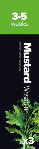 Must.Wasab,3 k. Horčica indická Wasabi