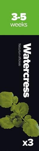 Watercress,3 k. Potočnica lek. Žerucha