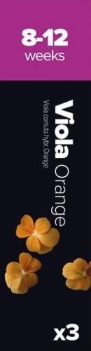 Plantui Sirôtka rohatá oranžová