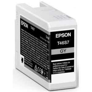 Epson T46S7 Gray